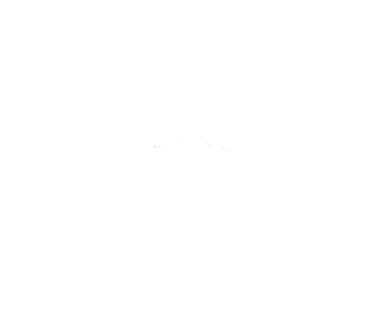 roadshaman-logo-png